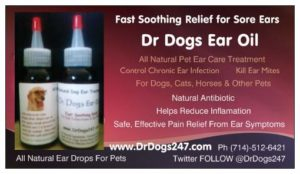 Cat And Dog Ear Treatment
